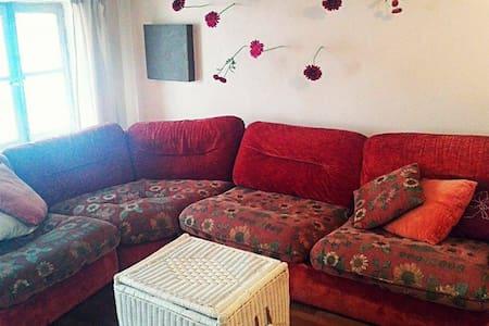 petit refuge en centre ville - Lyon - Appartement