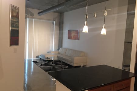 Modern 1 bedroom Edgewater Condo - Miami - Condominium