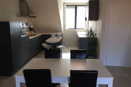 Charming apartment Antwerp City Centre - Antwerpen - Apartment