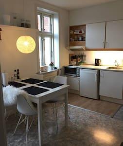 2 værelses lejlighed i Esbjerg tæt på gågaden - Apartment