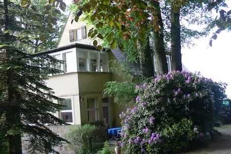 Ferienwohnung Lauscheblick - House