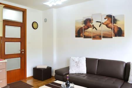 Royal Capital Apartment - Cetinje - Apartamento