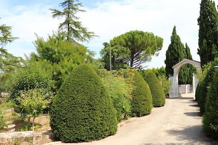 Villa con grande giardino e piscina. - Villa
