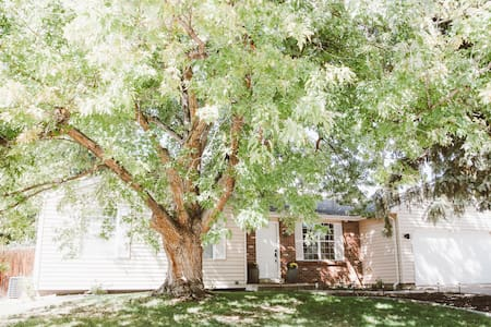 Cozy home 1 mile from downtown Louisville - House