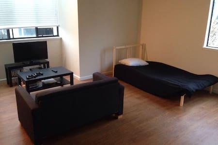 旧金山downtown黄金地段soma公寓loft一楼单床位