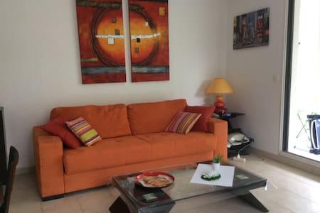 Appartement 2 pièces résidence - Juan les pins