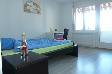 Furnished room in a nice appartment - Zurzach - Apartment