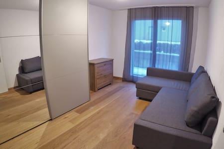 Nice room in Frutigen - Frutigen - Apartmen