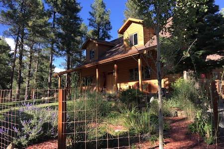 The Sprouted Grain Mountain Retreat - Ruidoso - Dům