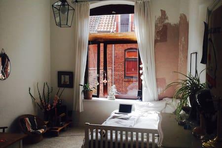 Cozy Room in Lüneburg Centre - Lüneburg
