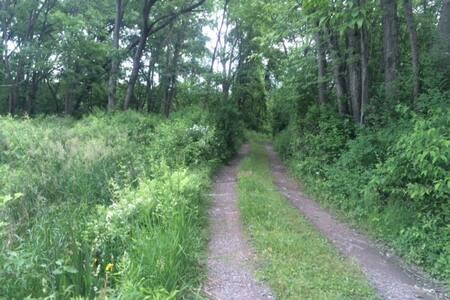 Cabin and Canoe - Harpursville - Cabin