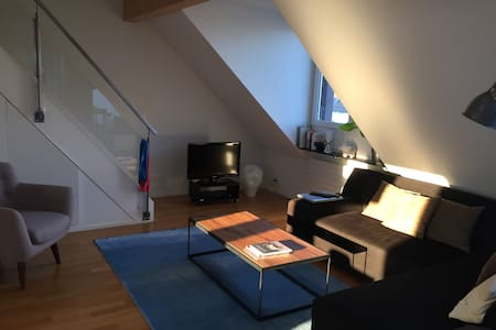 Full furnished apartment, centrally located - Zürich