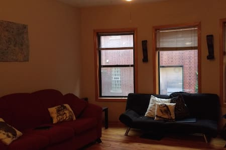 Big Room in Lakeview(walk to Wrigley or  Boystown) - Chicago - Apartment