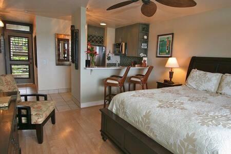 #105 Kaihalulu - Ocean View Studio - Hana - Condominium