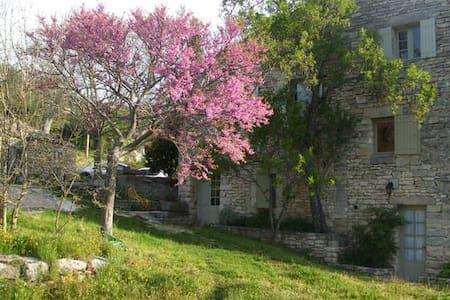 Chambre d'hôte provençale - Buoux - Bed & Breakfast