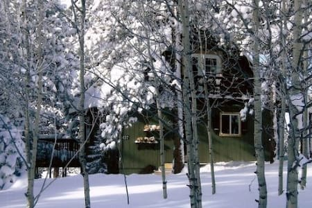 Cozy Chalet in Divide, Colorado - Divide - 小木屋