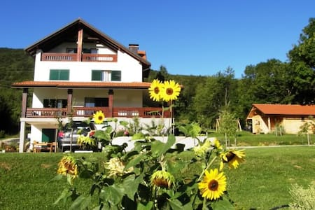 Apartments and rooms Robert ( 80821 - S1 ) - Korenica - House