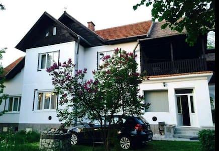 Lili's House - Bran - Vila