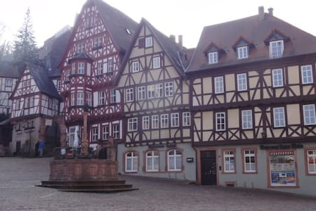 Miltenberg down town - Appartement
