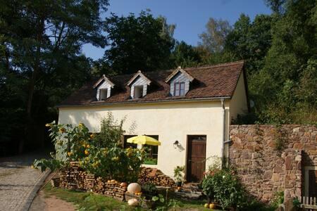 Wassermühle im wildromantischem Schanzenbachtal - Rumah