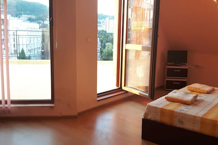 Pretty Studio with amazing terrace and Great view! - Appartement