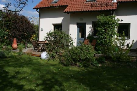 Ferienhaus Liliensteinblick - Gohrisch - Dom