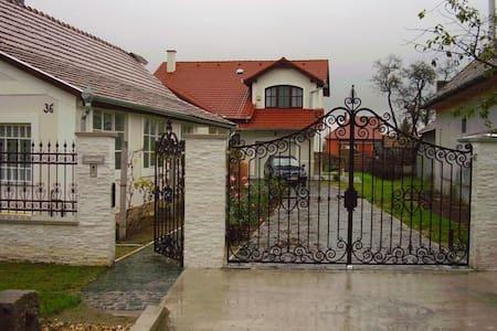 Budapest környezetében, gépkocsival - Vasad - Casa