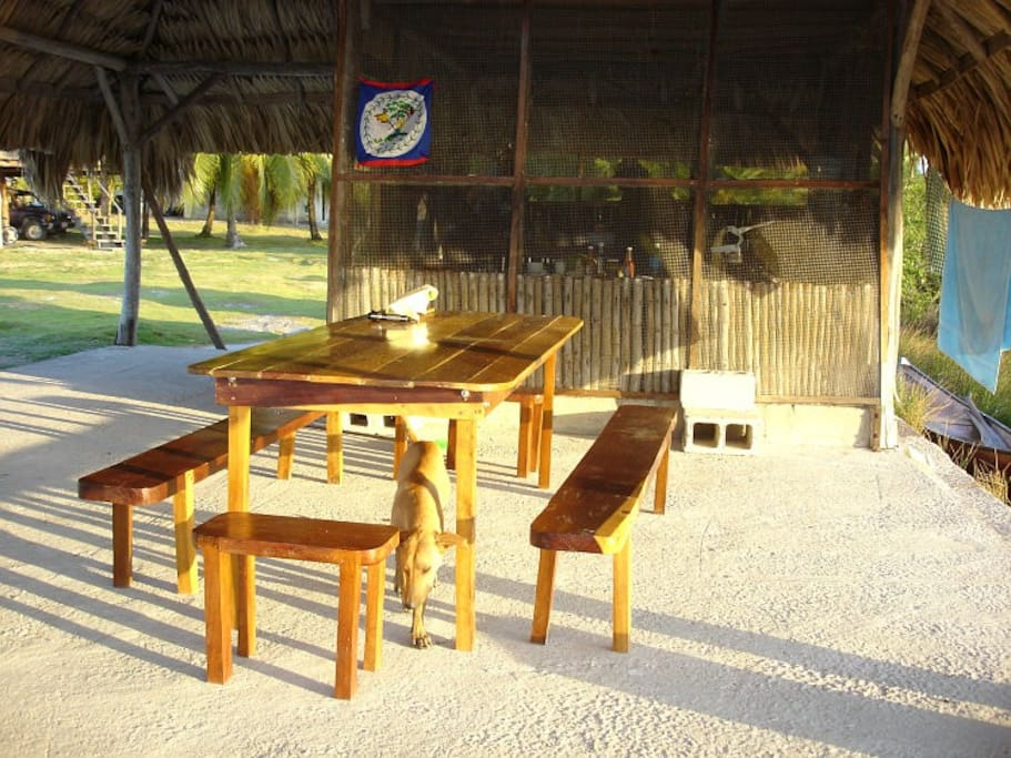 Dinning area under the Palapa. The lovely Ruff Puppy looking for leftovers.