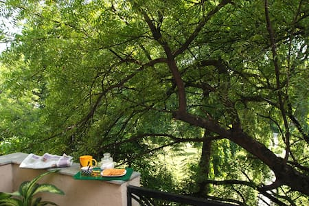 Neem - 2 Nizamuddin East New Delhi