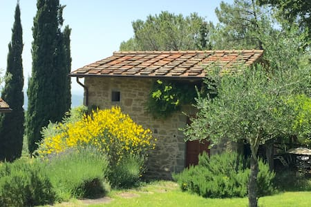 Independent accommodation with pool - Loro Ciuffenna