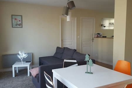 Appartement Epernay centre-ville - Épernay - Apartment