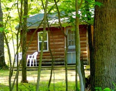 Quiet Cabin in the Woods (K2) - Blockhütte