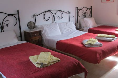The Olive Tree Country Guest House - Cañada del Trigo