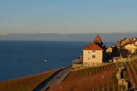 Castle in the hill. Stunning view 2 - Chexbres - Apartment