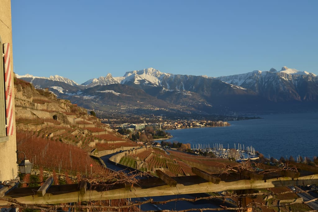The view from the Domaine du Burignon : the vineyard of Lavaux, Lake Geneva, the area of Montreux and the french and swiss Alps.        Good news to all guests!20% OFF ENTIRE STAY IF YOU CONTACT ME PRIOR BOOKING!MYEMAIL:annehost@outlôók.çòm