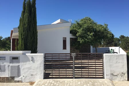 A House in the Lowland - Casa