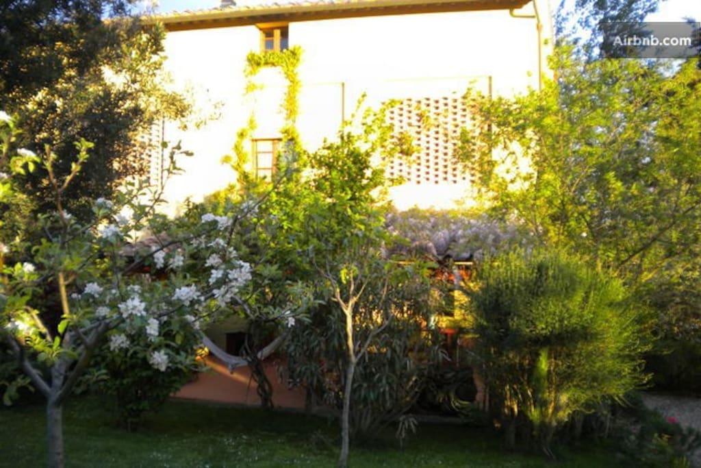 il giardino nel mese di maggio