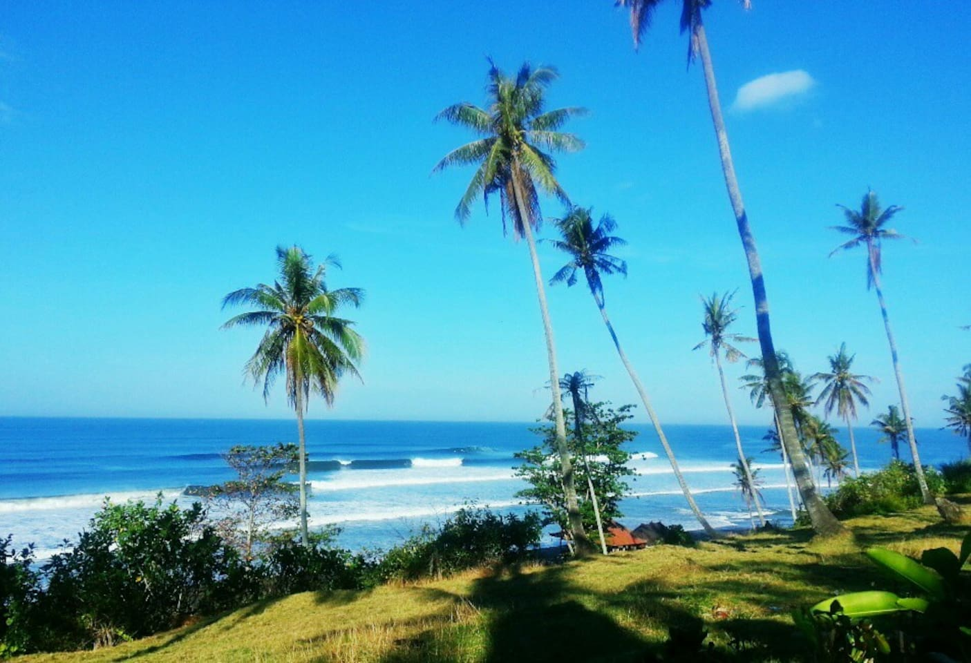Amazing Views of Balian surf break from all rooms!