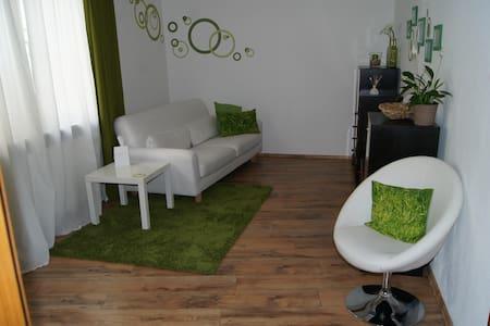 Große Ferienwohnung im Stadtzentrum - Apartment