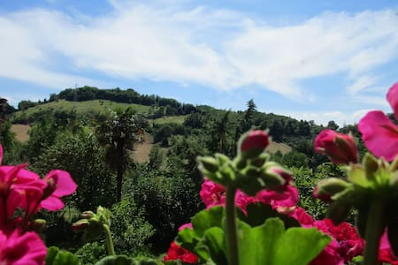 B&B Carboni, natura e relax - Bed & Breakfast