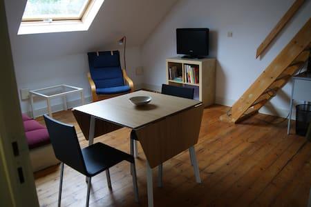Appartement de 40 m2 sous les toits à Ixelles - Ixelles