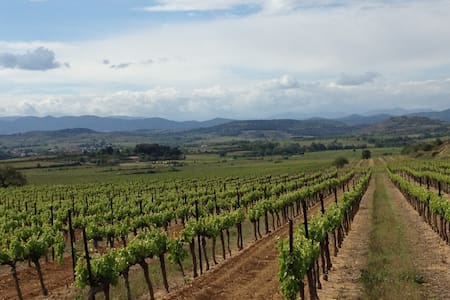 Heart of the Languedoc vineyards!