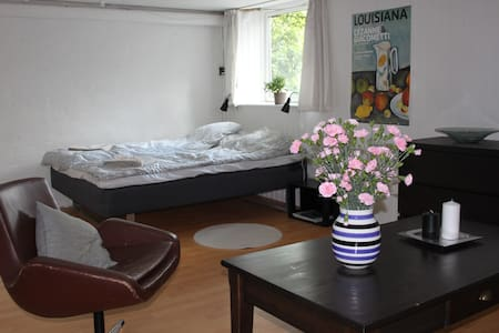 Large room near downtown Århus. - Talo