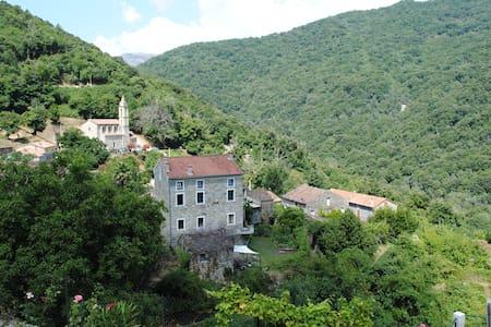 Chambre d'hôtes en Corse du Sud n°1 - Bed & Breakfast