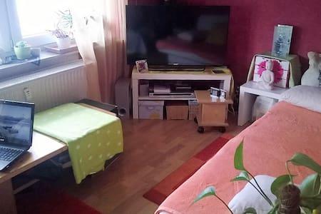 ruhige Wohnung im EG Nähe HD - Earth House