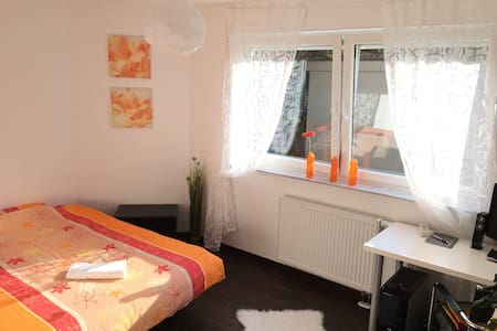Lovely room near the city center - Appartement