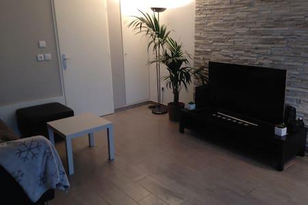 appartement 2 pieces rez de jardin - Apartment