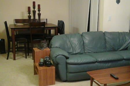 Couch or air mattress central DFW - Appartement