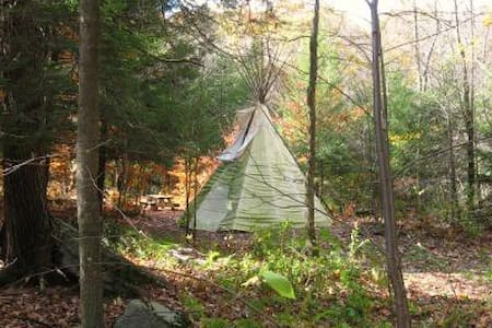 Tipi (teepee) at Abrams Creek - Elk Garden