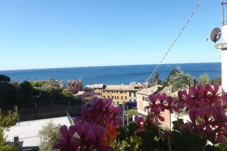 tra fiori e mare scopri la Riviera Ligure e Genova - Genoa Nervi - Villa